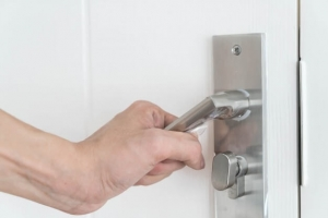 Door Handle - Hotsy